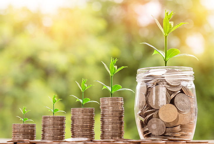 Growing Your Financial Knowledge